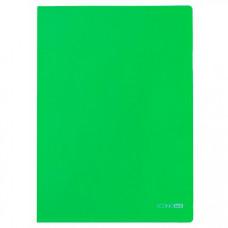 Папка-кутик Economix A4 180 мкм Зелена (E31153-04)